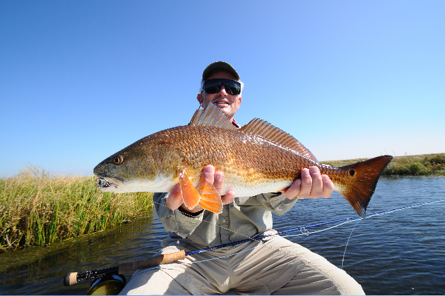 Flyfishing for louisiana reds fly water expeditions for Louisiana redfish fly fishing