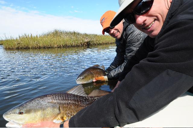 Double header redfish