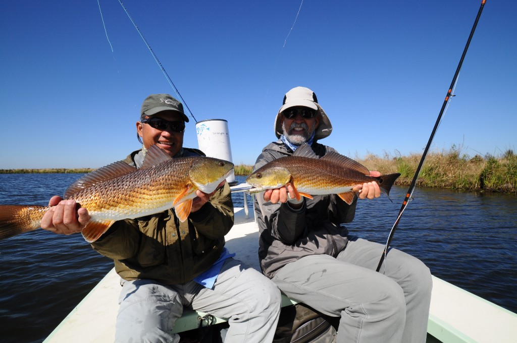 Pair of redfish on fly