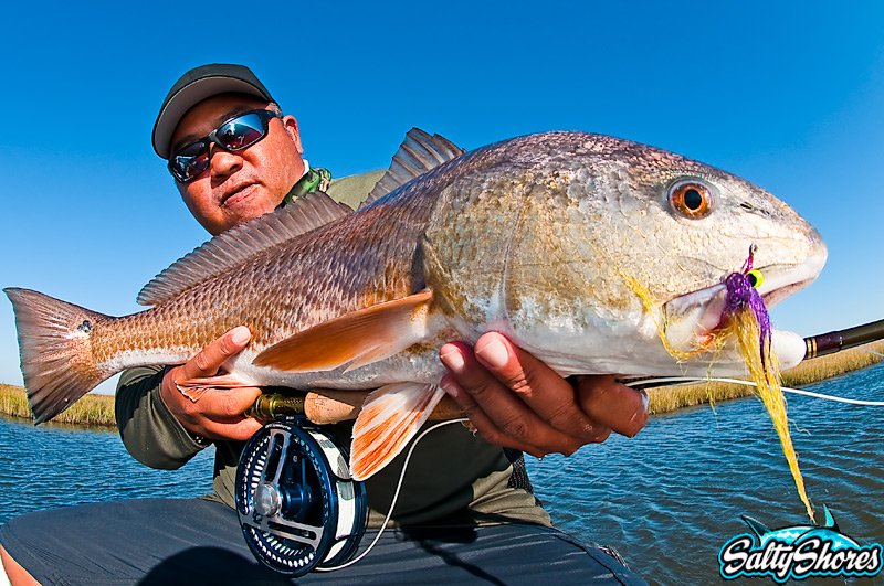 Sam Root red on fly