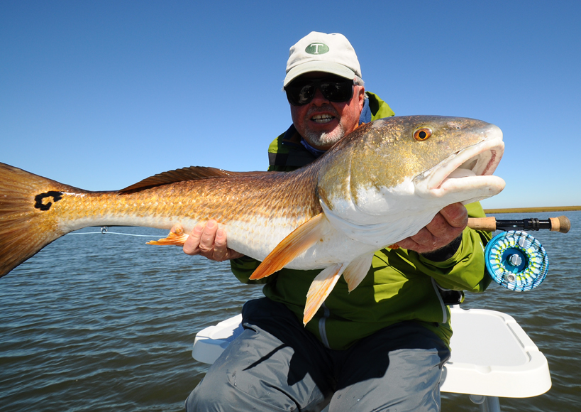 Big louisiana redfish on fly fly water expeditions for Louisiana redfish fly fishing