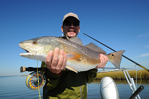 Redfish on the Inshore Power Boat.
