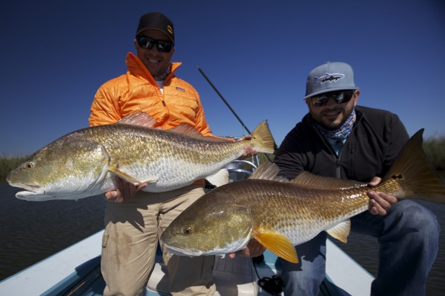 November in the louisiana marsh fly water expeditions for Fly fishing new orleans