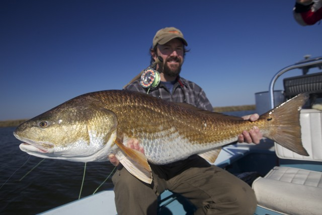 Louisiana fly fishing for redfish fly water expeditions for Fly fishing redfish