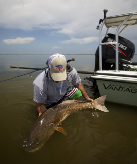 Fly fishing louisiana for monster red fish in september for Louisiana fly fishing