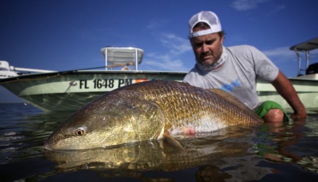 Louisiana fly fishing for redfish fly water expeditions for Fishing in la