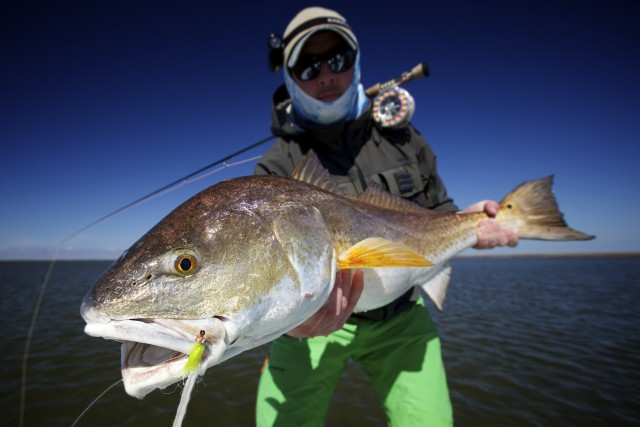 Late winter louisiana fly fishing fly water expeditions for Fly fishing redfish