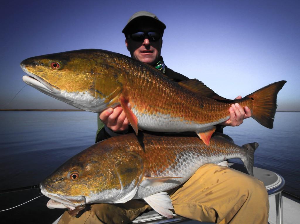 Louisiana fly fishing in mid november fly water expeditions for Louisiana fly fishing