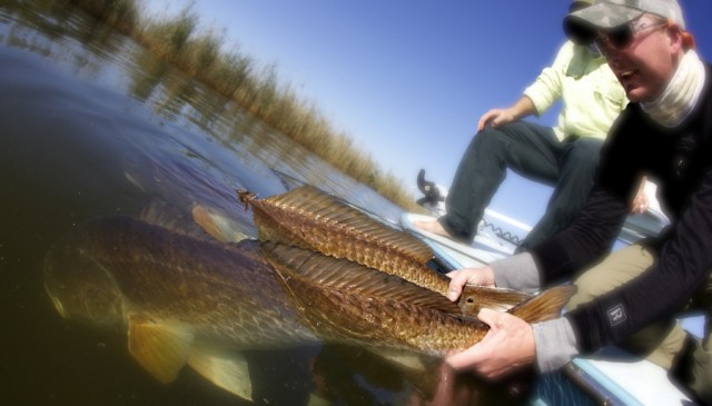 louisiana redfish fishing
