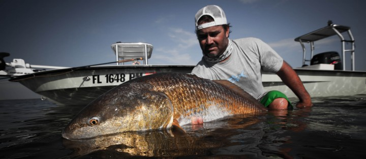 Louisiana fly fishing fly water expeditions for Louisiana fly fishing